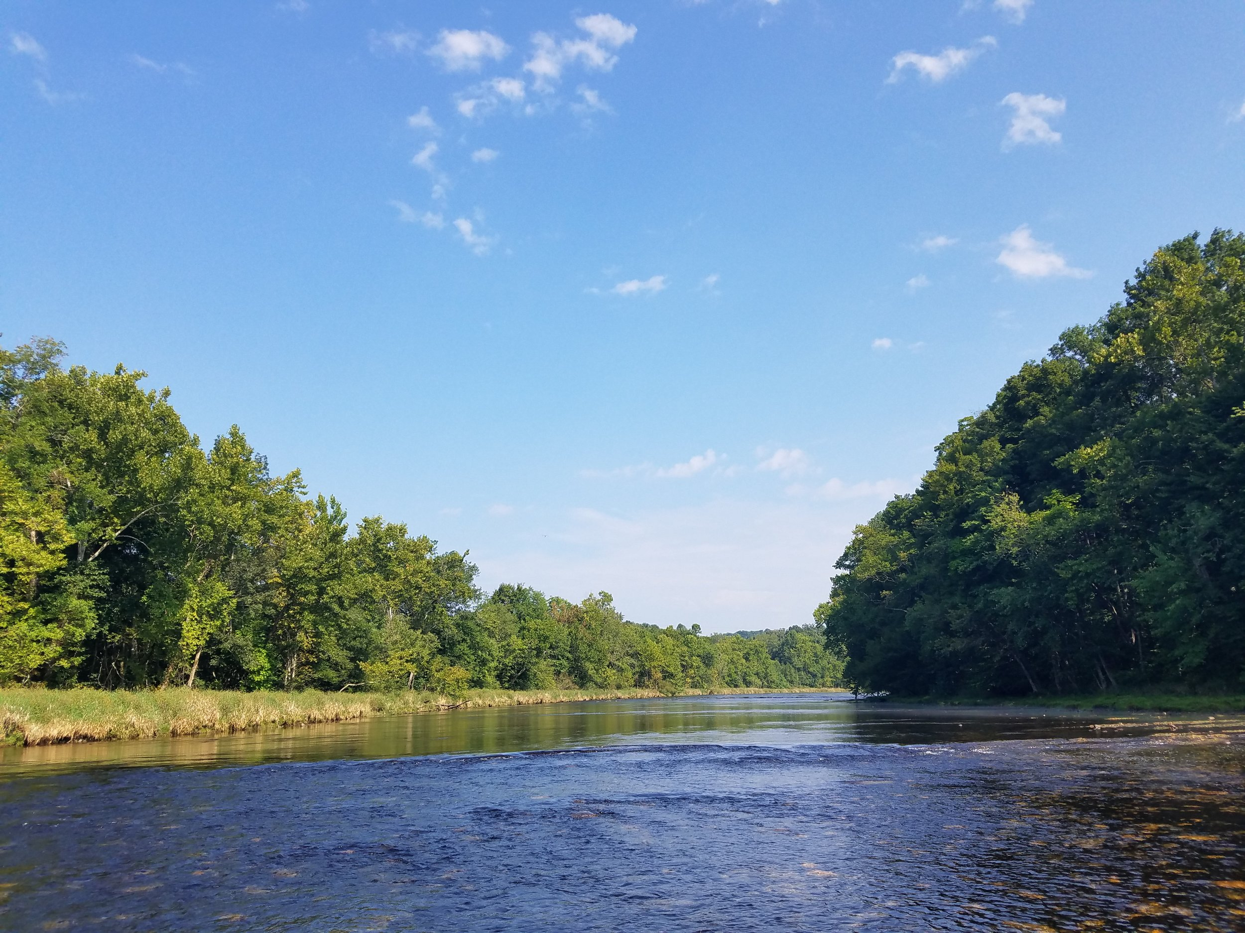 The South Holston River