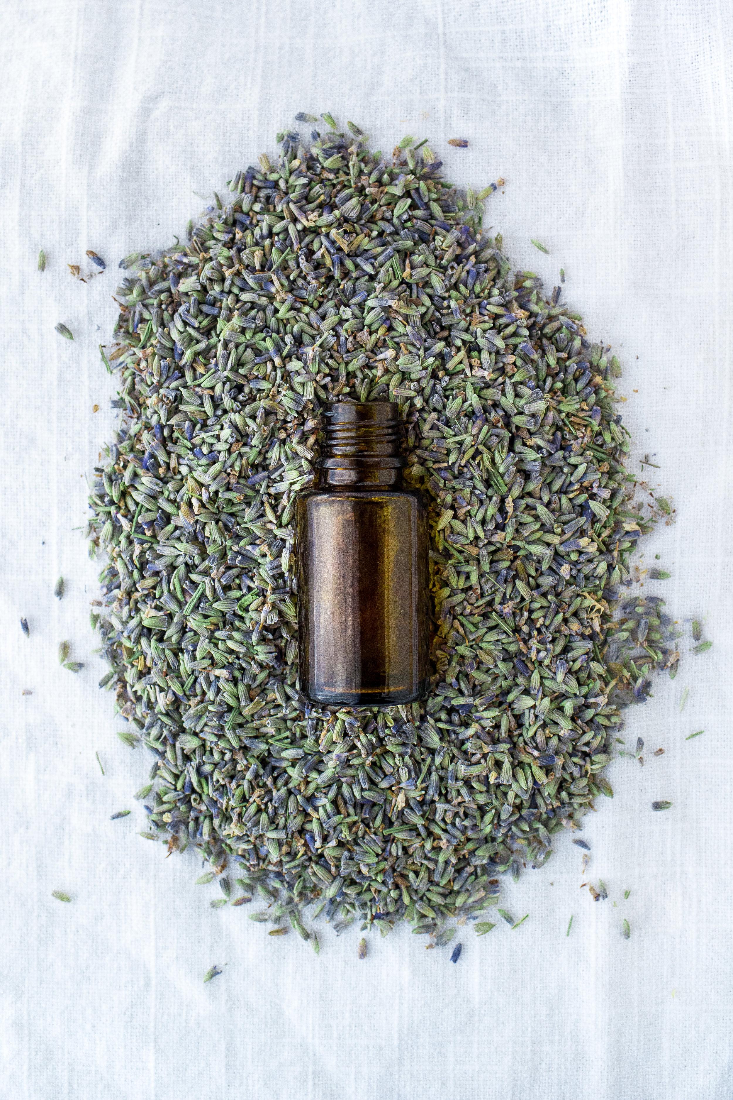 Essential Lavender-Laura Olsen.JPG