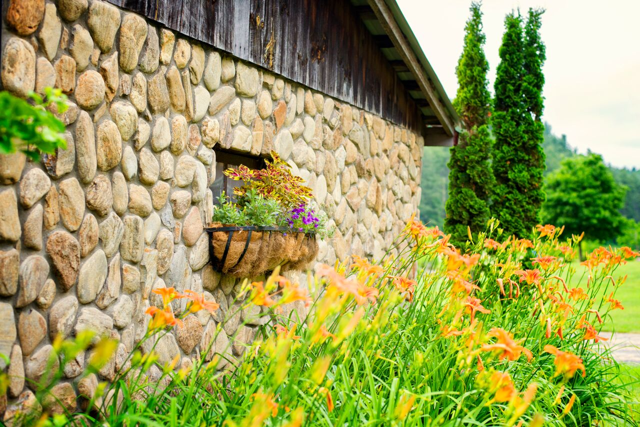 Flowers at the Old Hay Barn - Copy.jpg