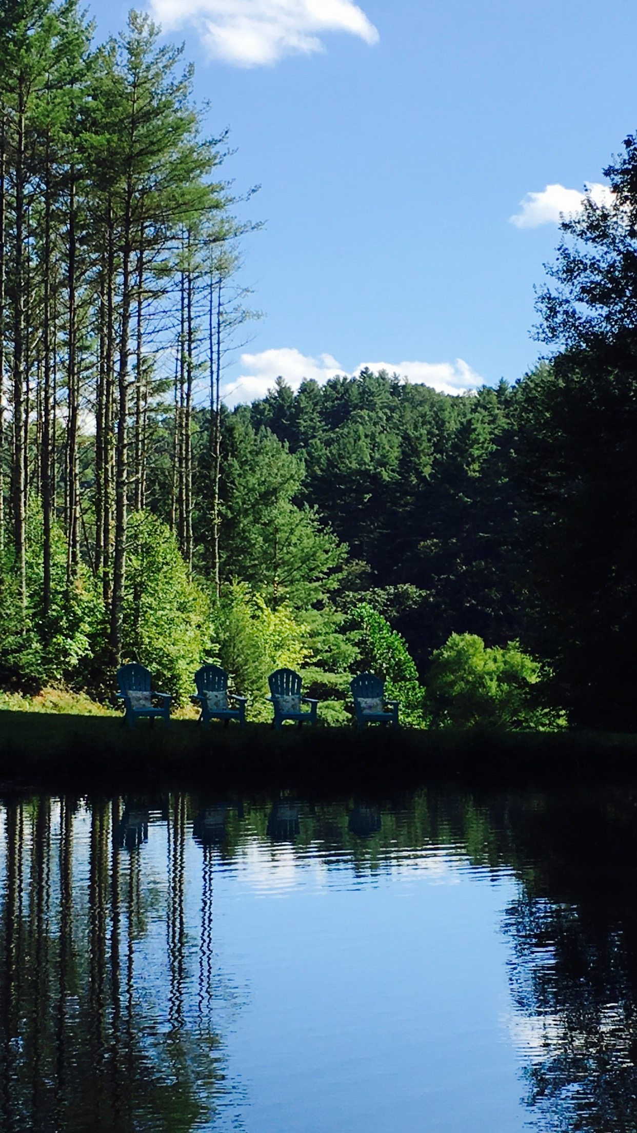 Summer Pond.jpg