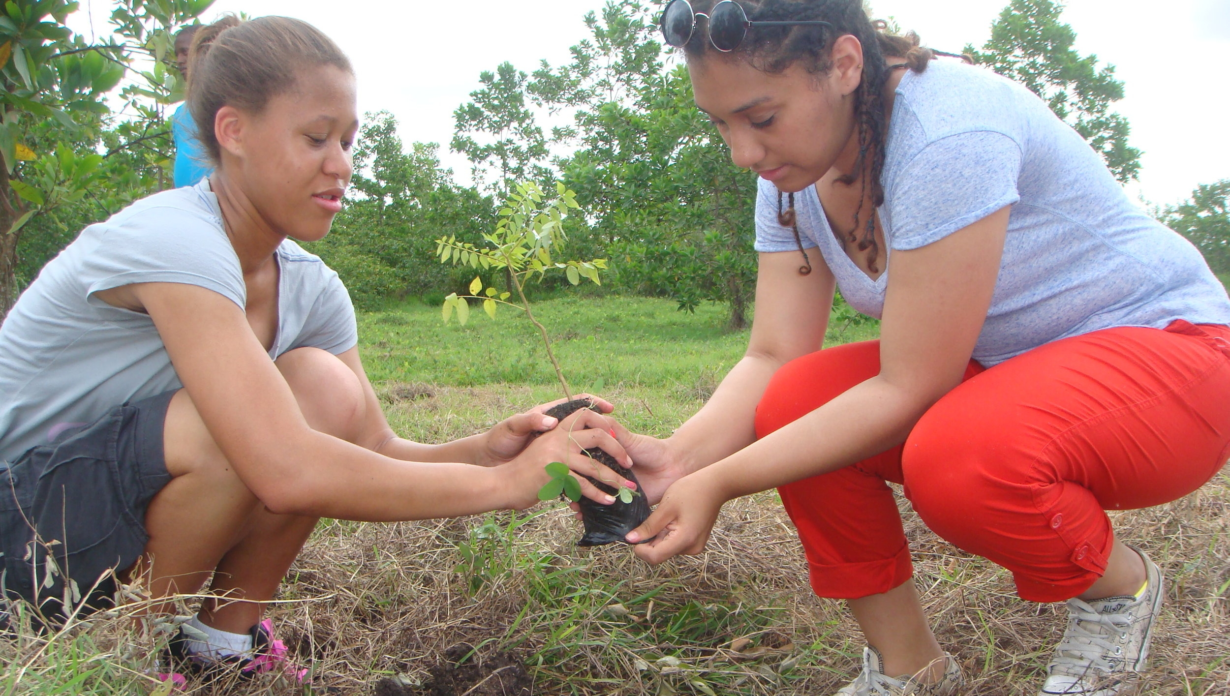 Two young women planting at tree in Monte Plata province