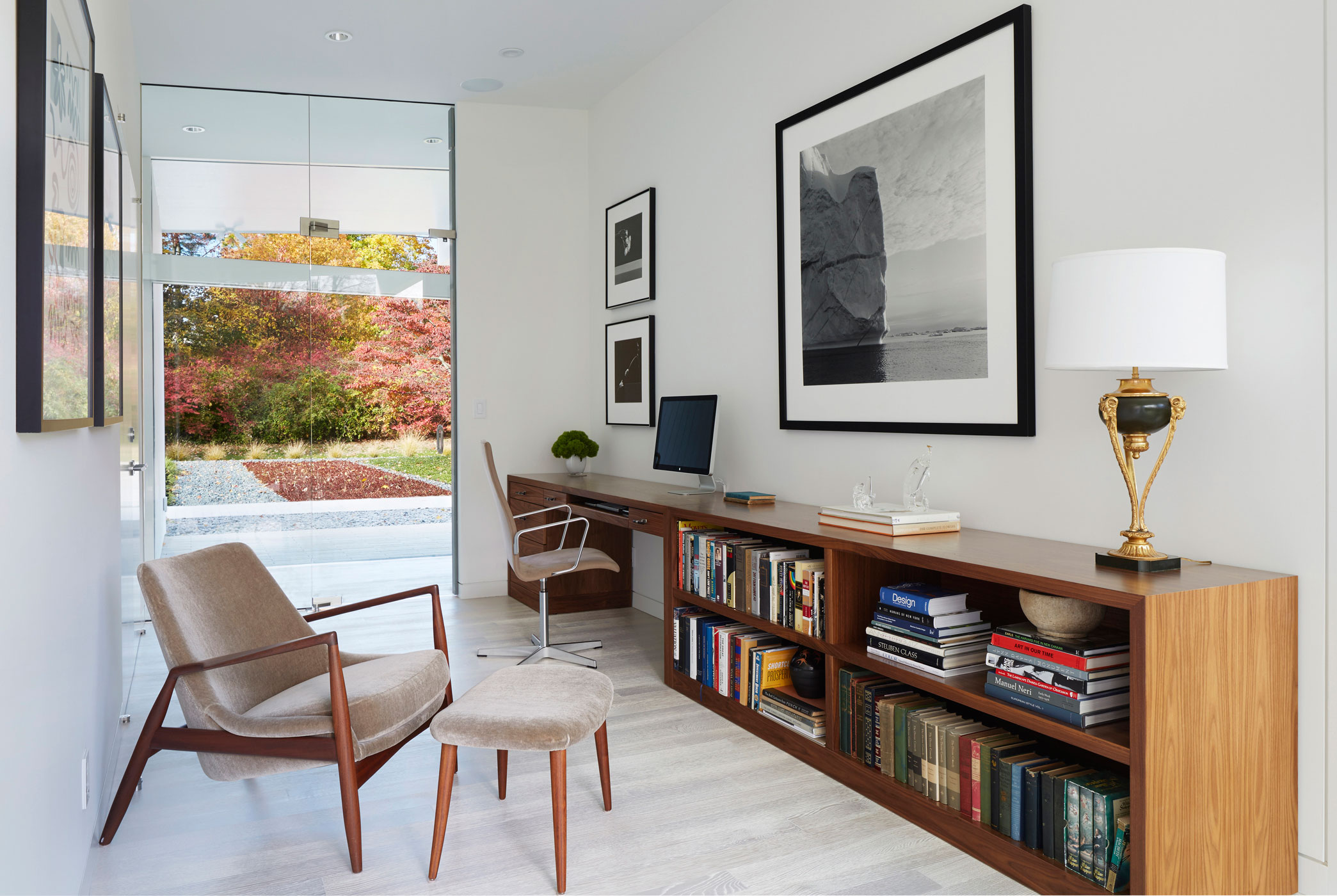Library - Mid-century Modern House