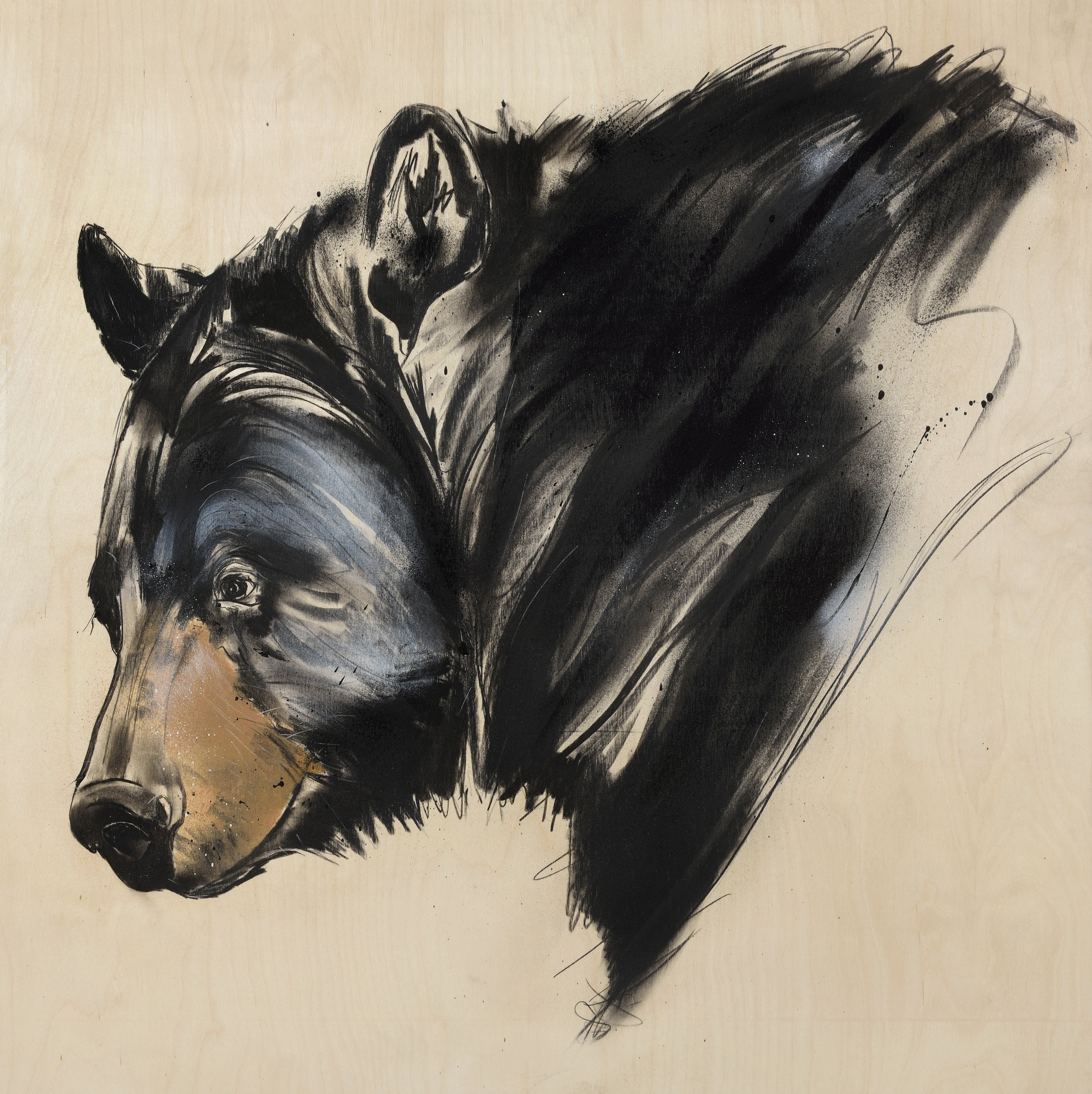 Black Bear                                                                  , Limited edition giclee print of 25 printed on Somerset satin 330gsm enhanced paper with deckled edges.