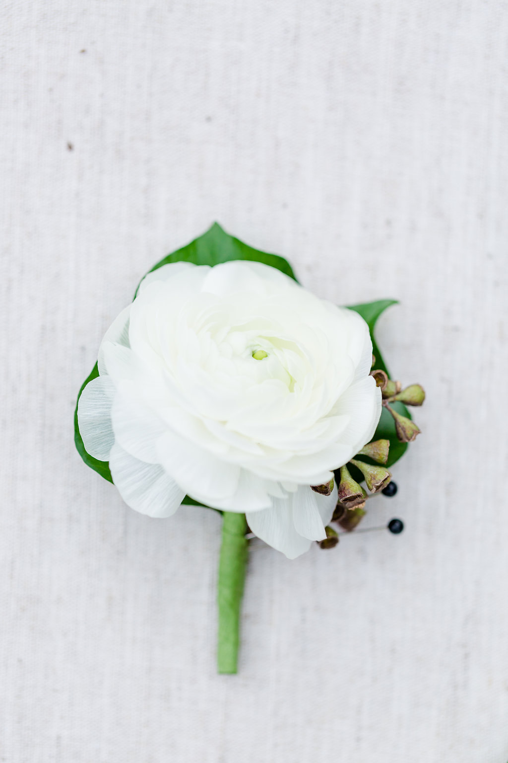 White Ranunculus single boutonniere with a touch of greenery. Rachael E.H. Photography