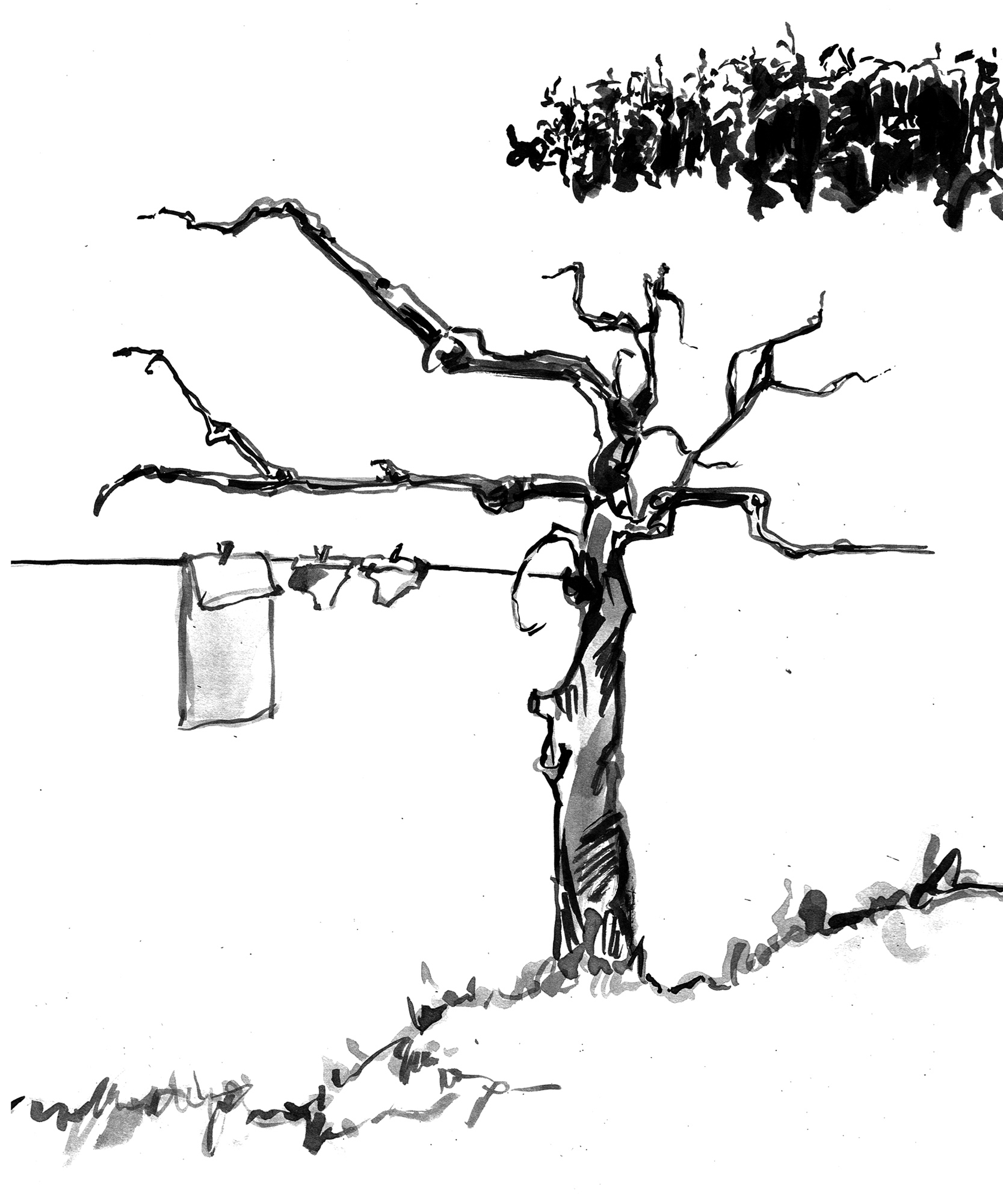 scene-tree.jpg