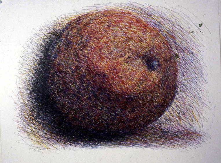 tangerine drawing.jpg