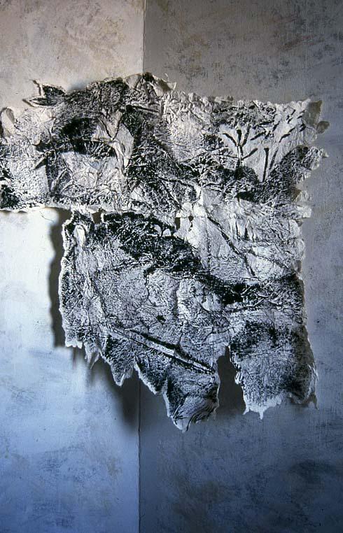 B-wskin.jpg