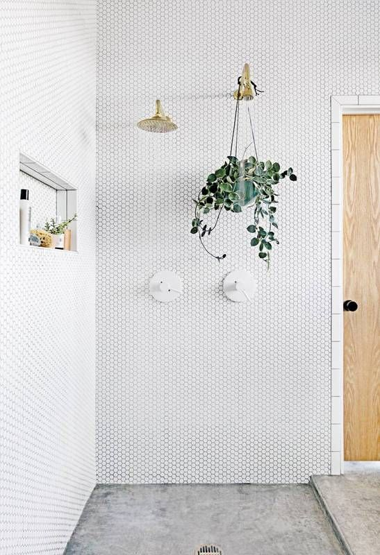 Shower Walls - Image from Domino
