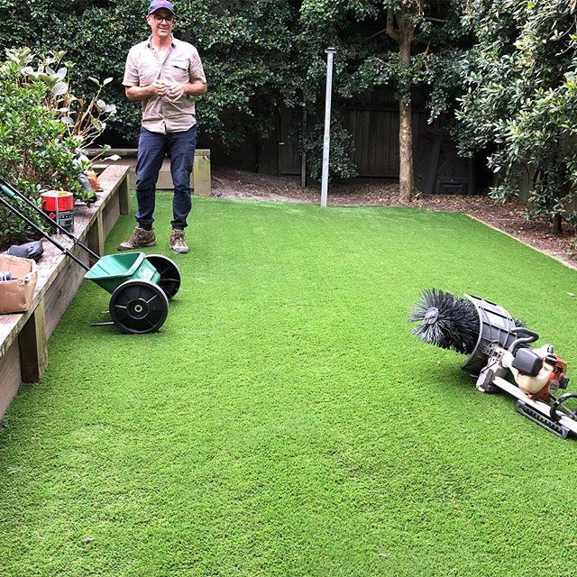 Birrell St. Waverley with the TAMA40 artificial grass.  #artificialgrass #sydneygardens #landscaping