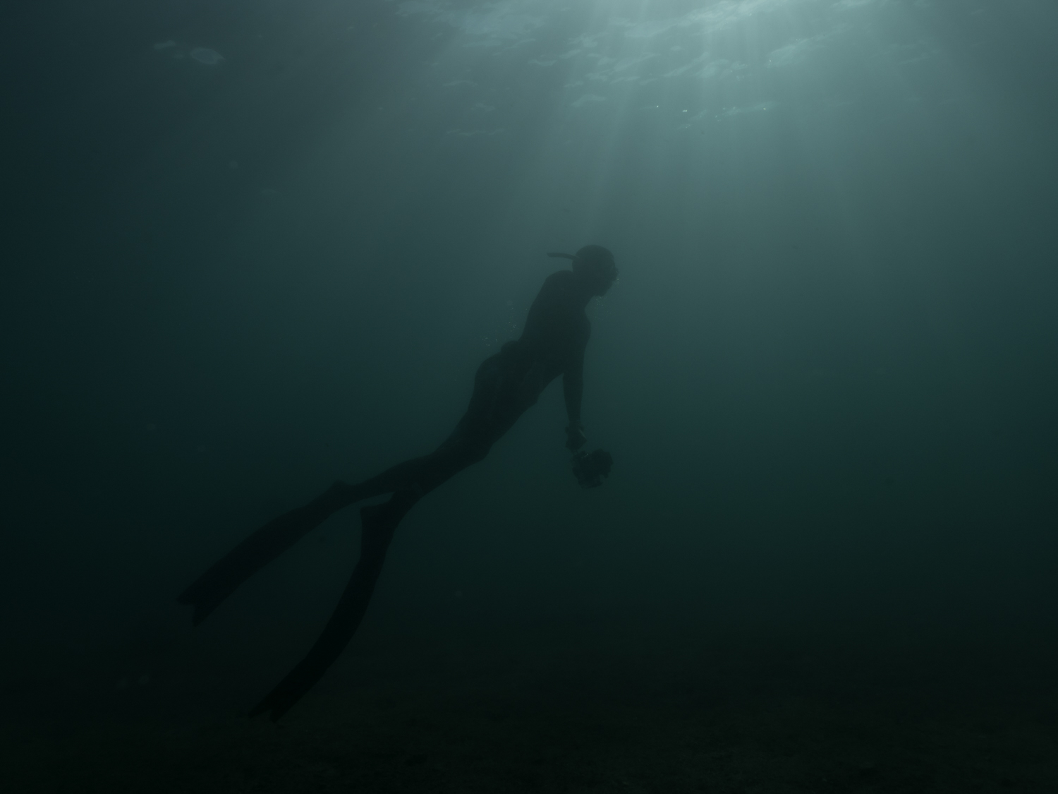 Finding my way in the ocean while making the most of life.Join me for freediving courses in Sydney Australia over summer or learn to master surf survival skills. check out the resources and articles for tips on how to improve your freedive skills and training. -