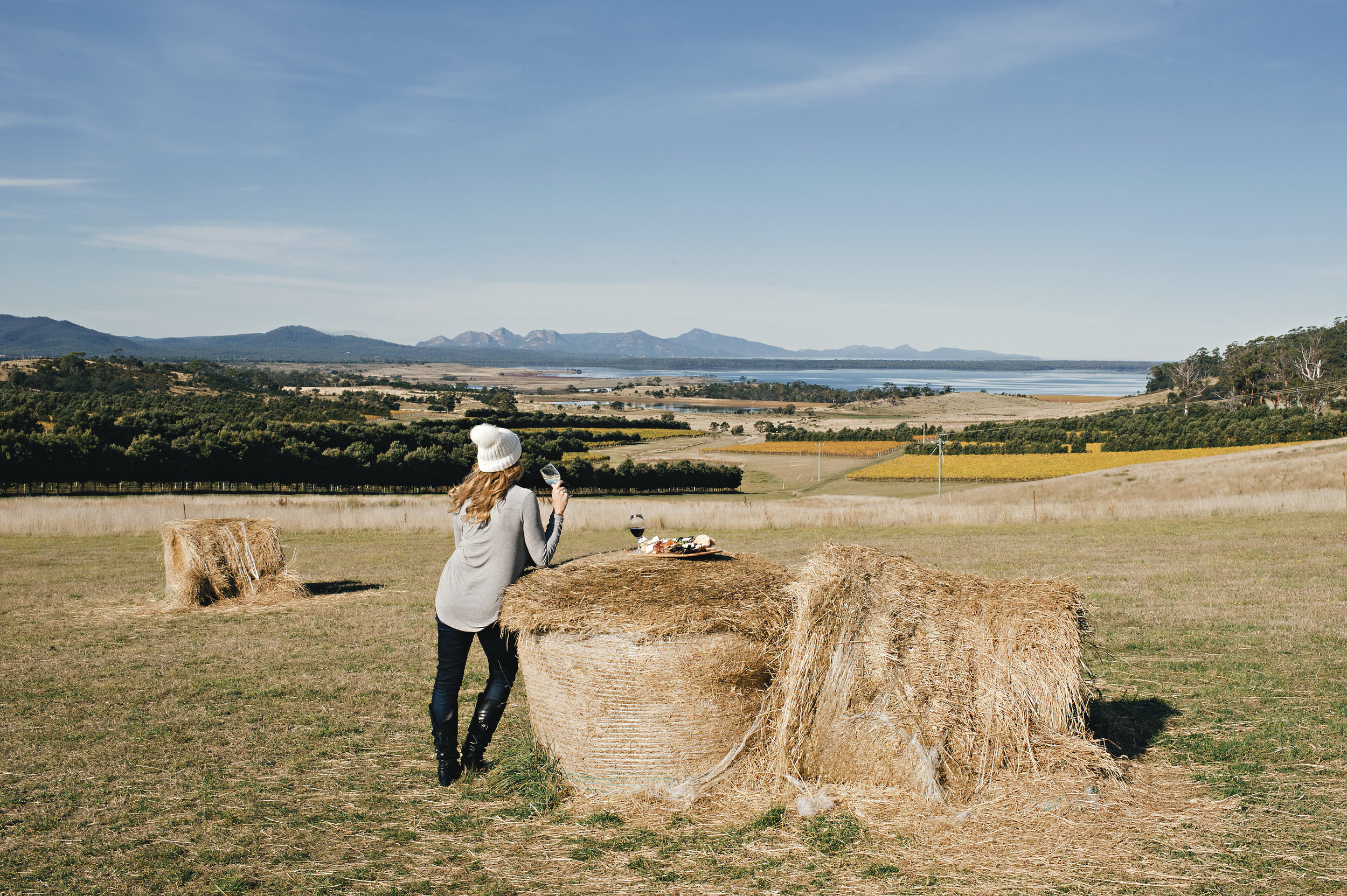 Devil's Corner Cellar Door - a vineyard on the East Coast of Tasmania with an impressive view even by Tasmania's standards.