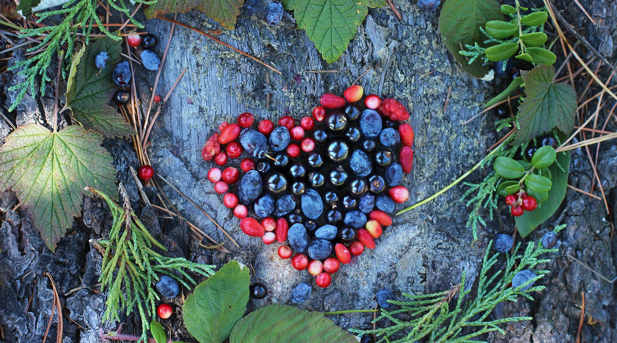 Fructe antioxidante
