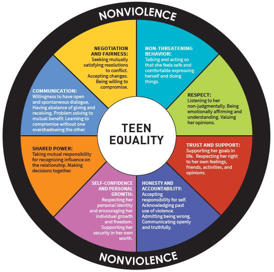 teenequalitywheel1.jpg