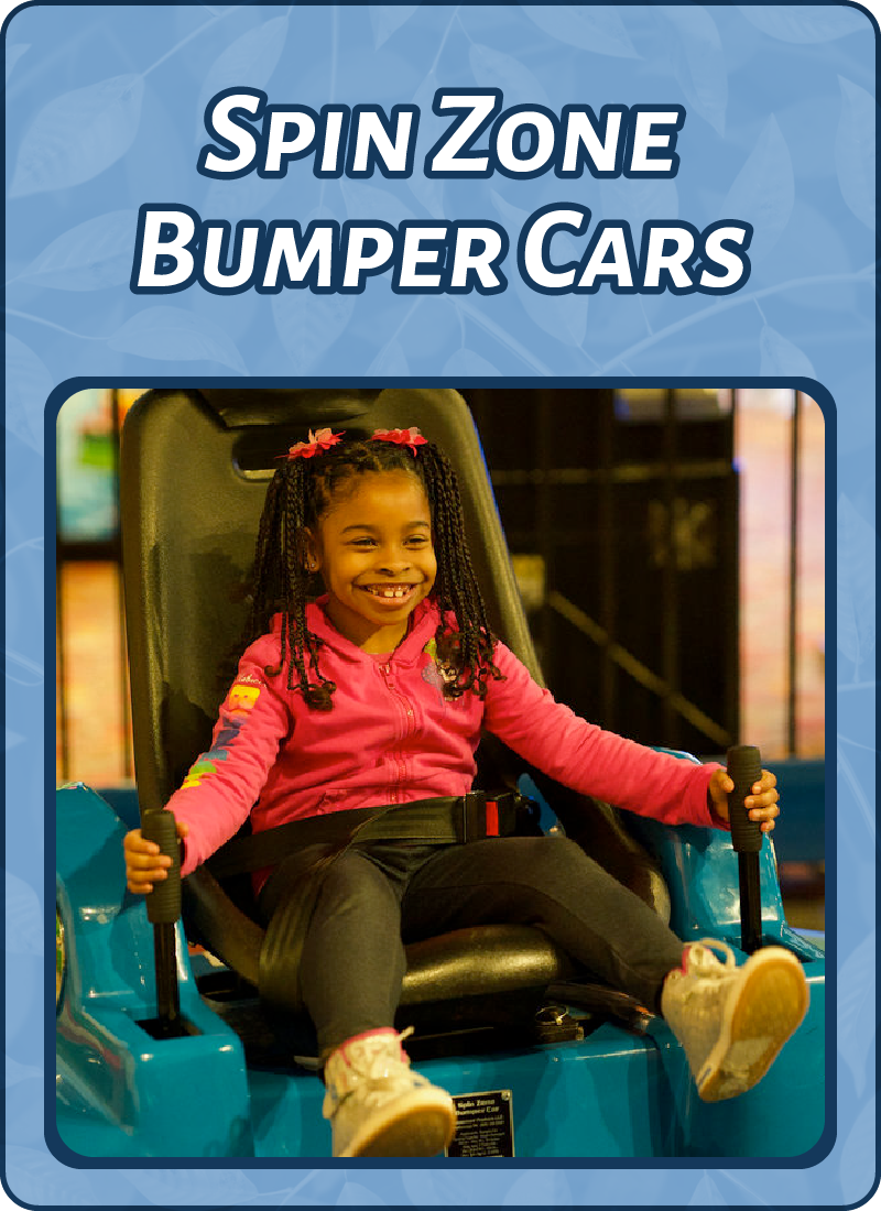 indoor_bumpercars.png