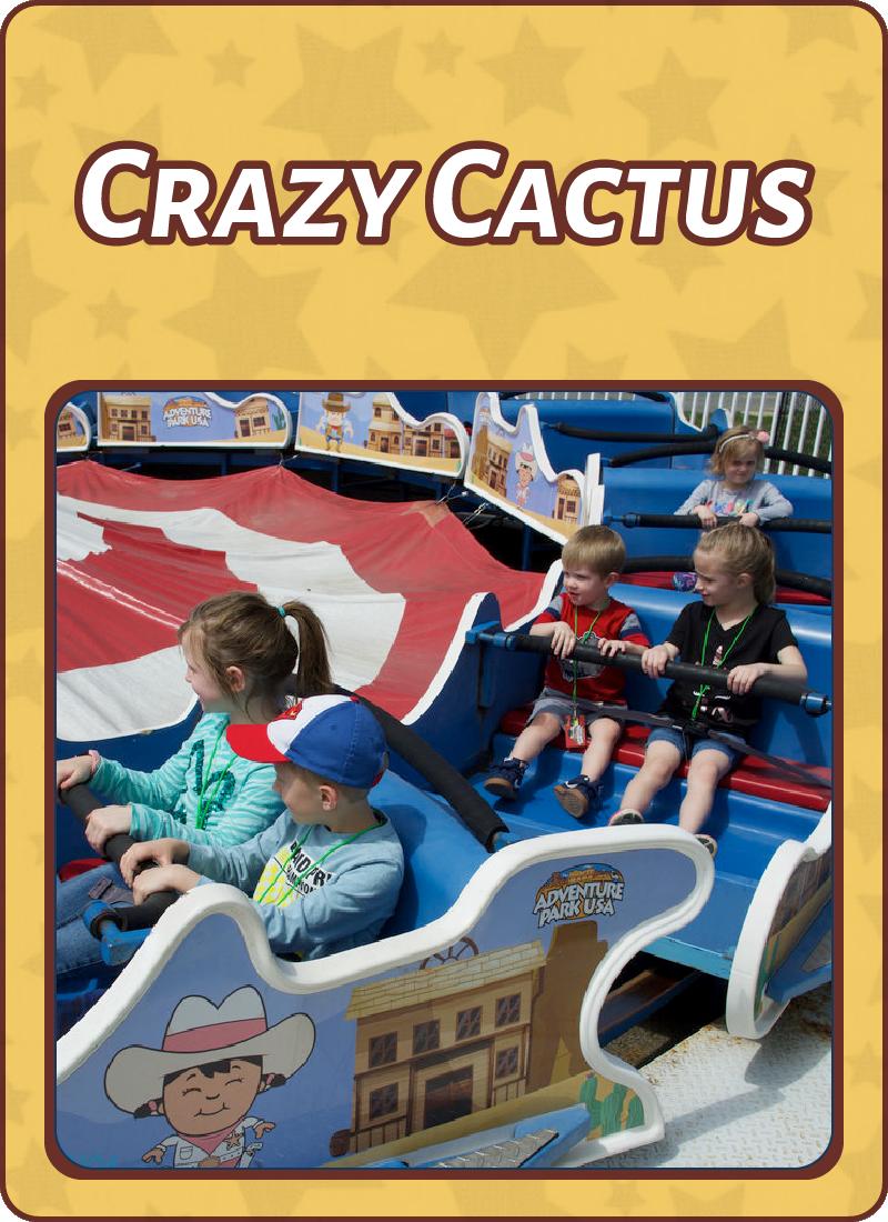 crazy_cactus)kids_rides_frederick.png