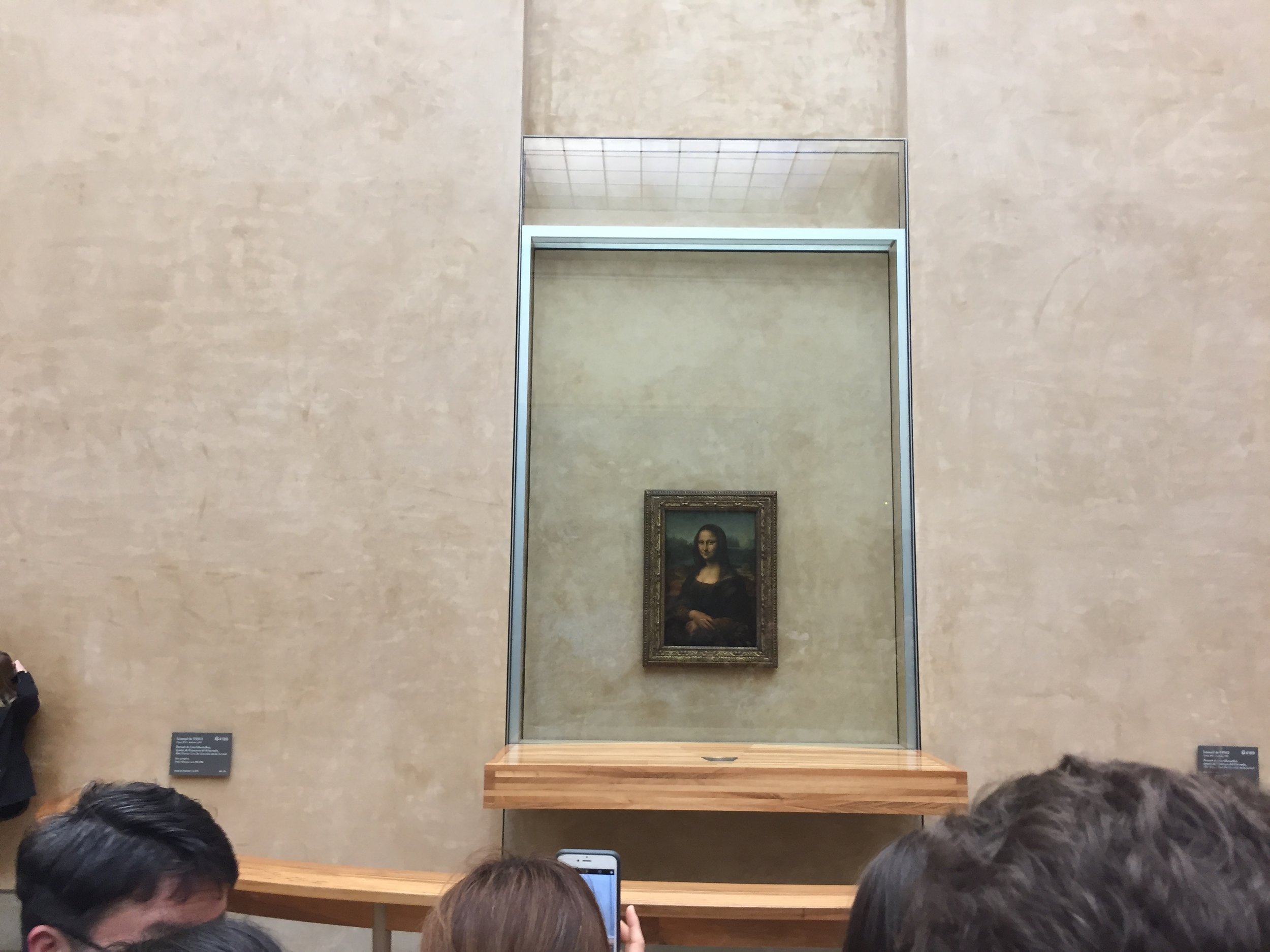 omg the Mona Lisa! So much hype for just a smirking girl if I may say so myself.