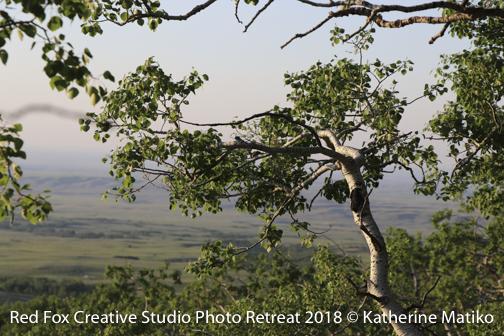 red fox creative studio - photo retreat 2018-3173.jpg