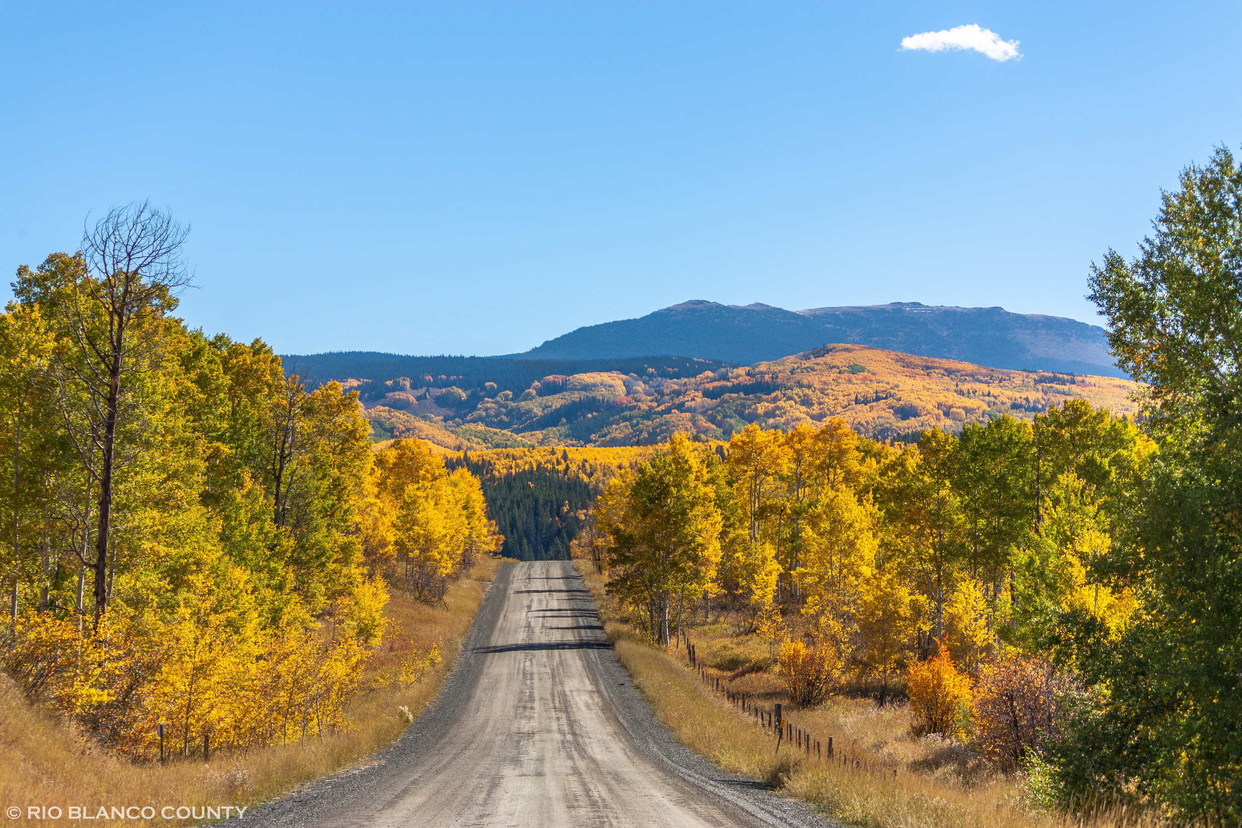 Flat Tops Scenic Byway Road.jpg