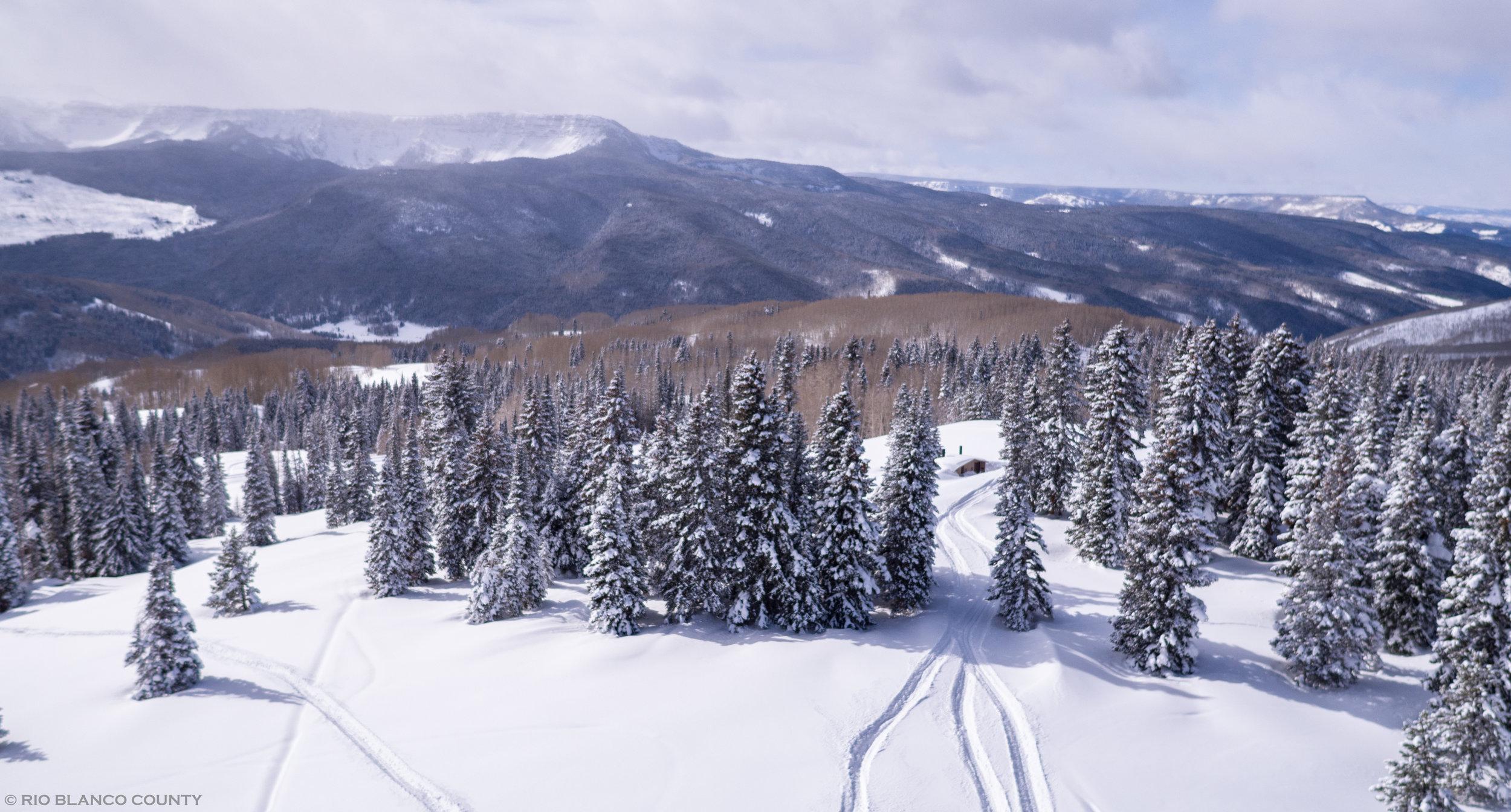 Winter - 18.jpg