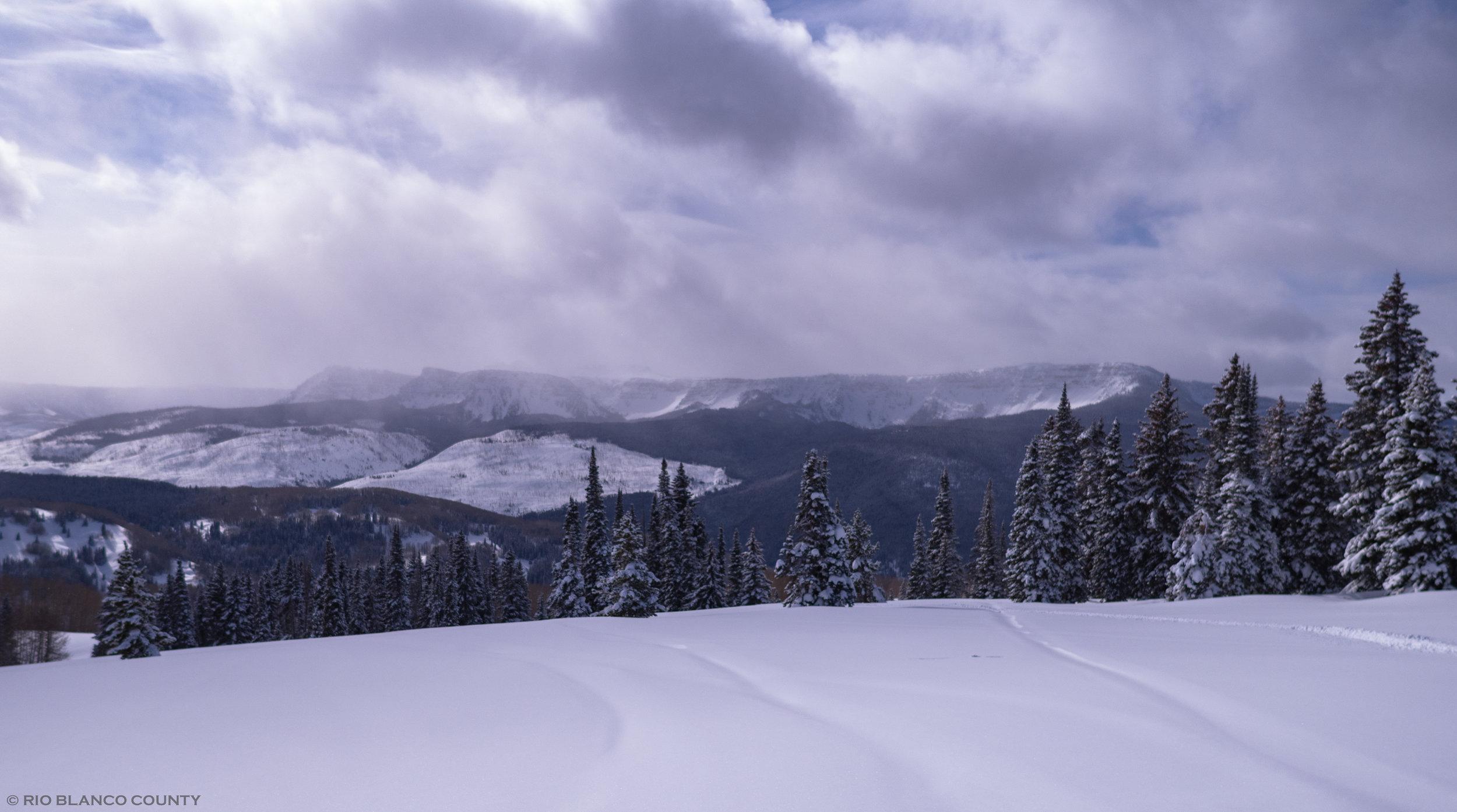 WRNF Winter 4.jpg
