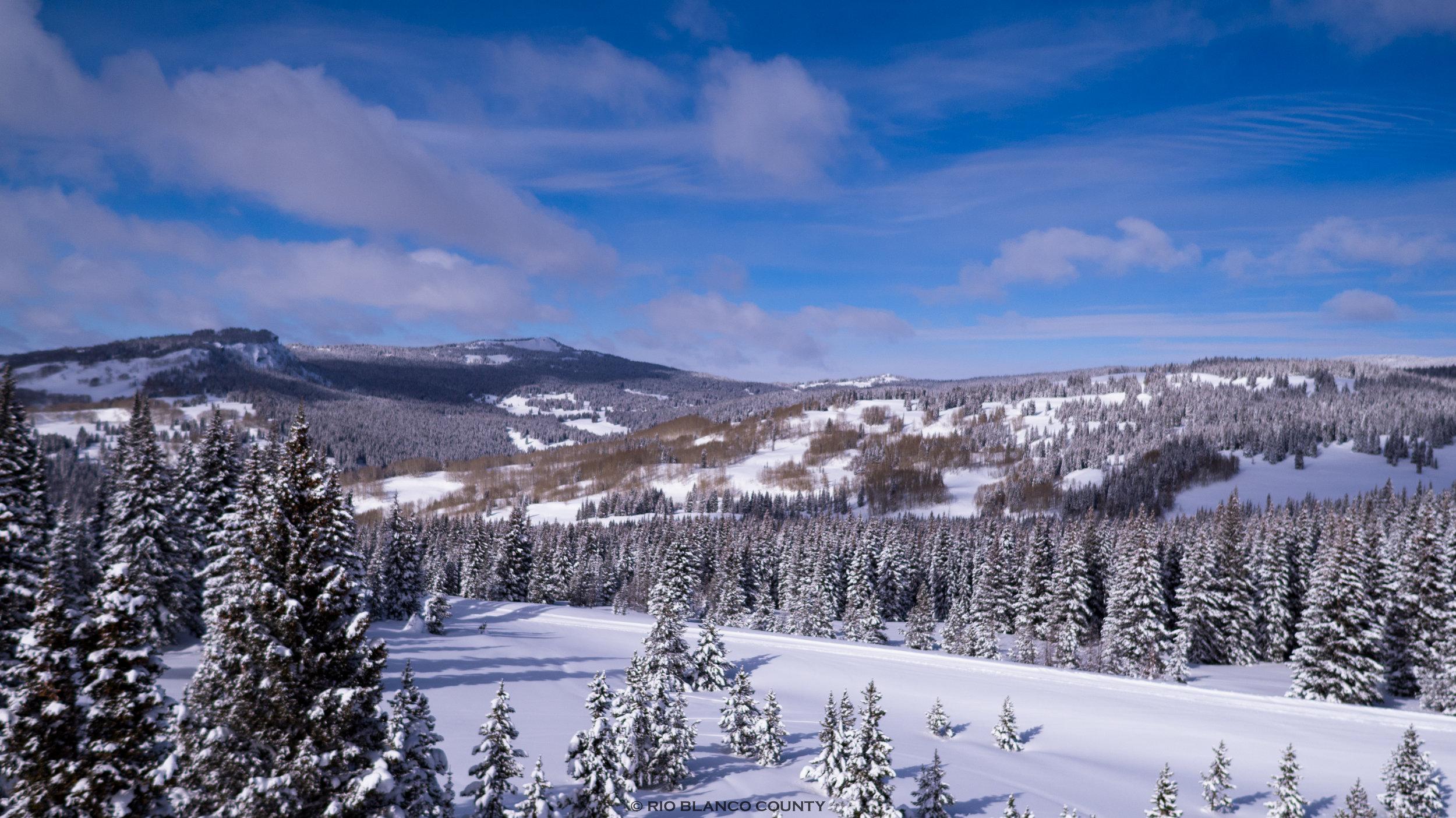 WRNF Winter 3.jpg