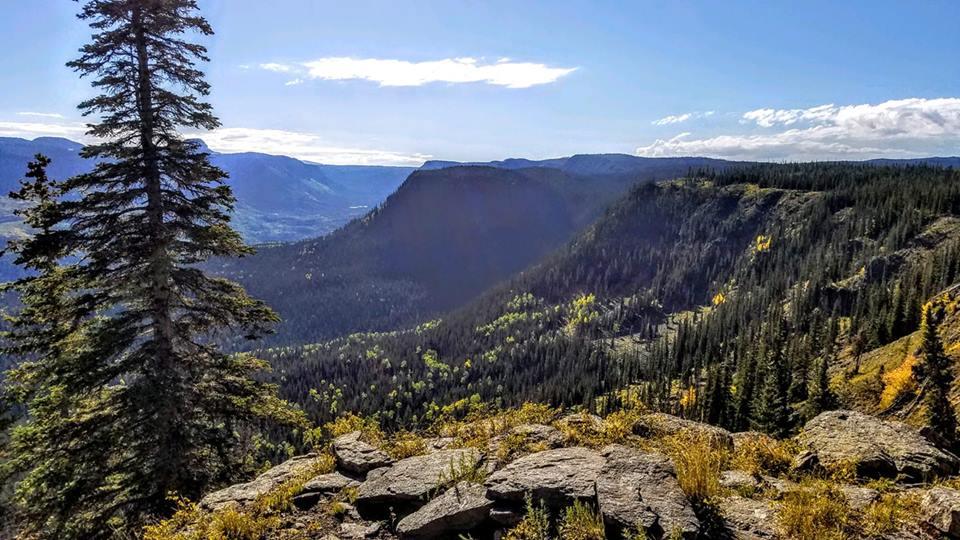 Gina Ray - Flat Tops Wilderness.jpg