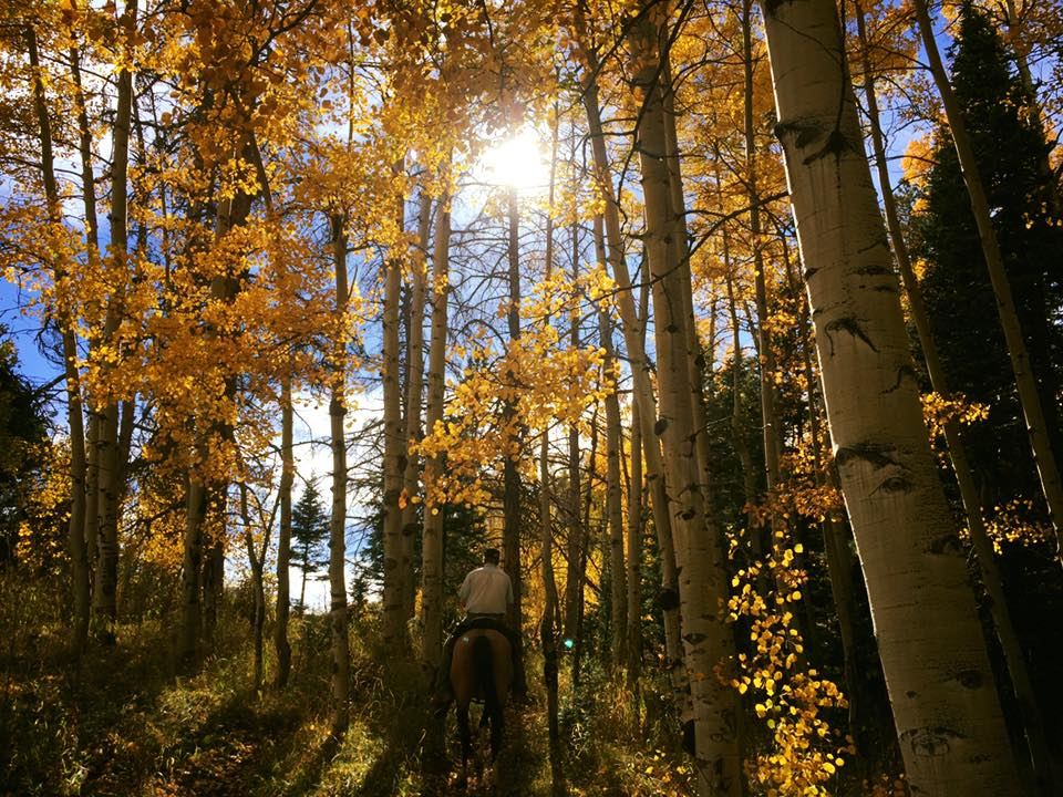 10-Ann Marie Scritchfield Horseback is the Best Way to View Fall Colors.jpg