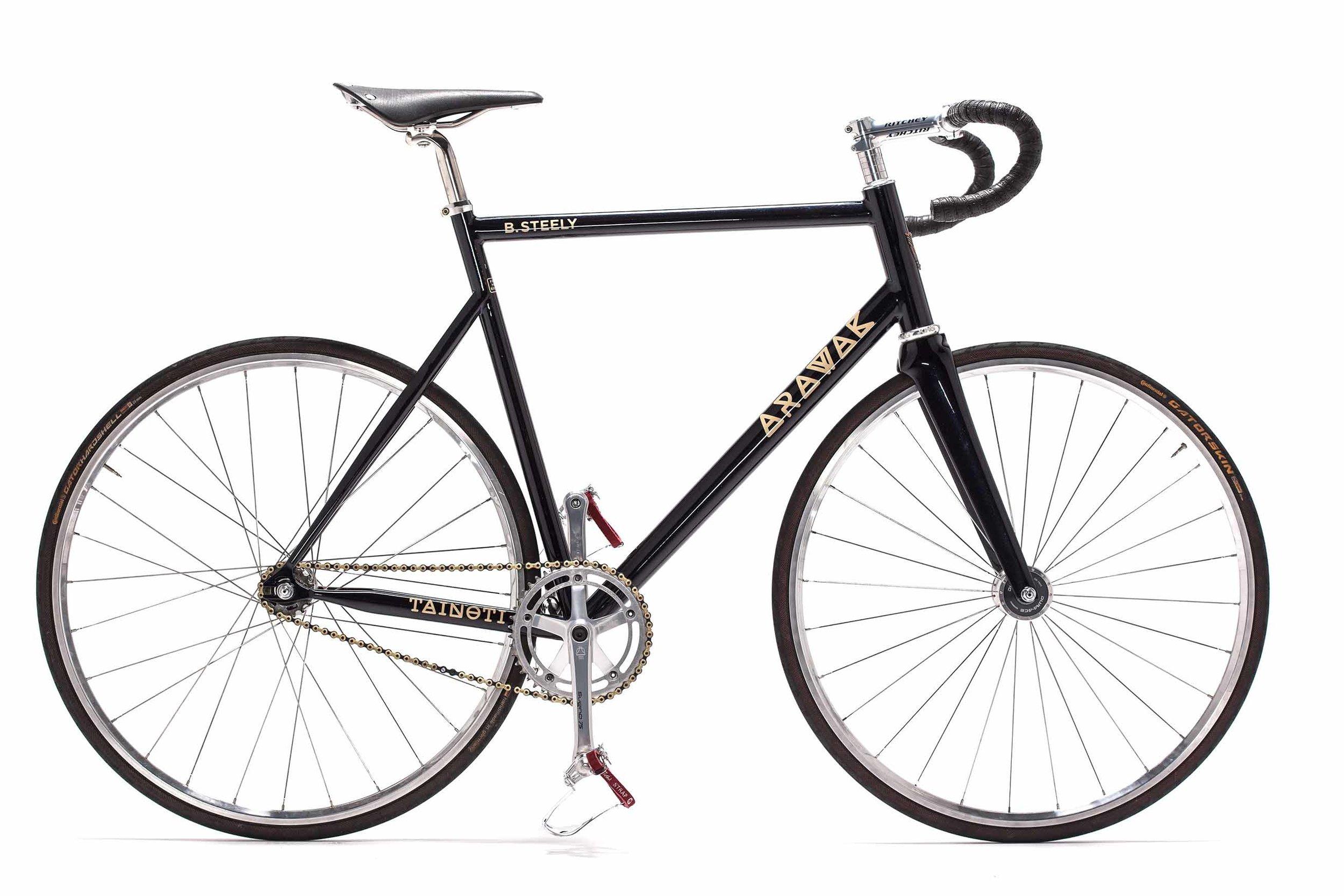 Arawak Cycles Steely Bike