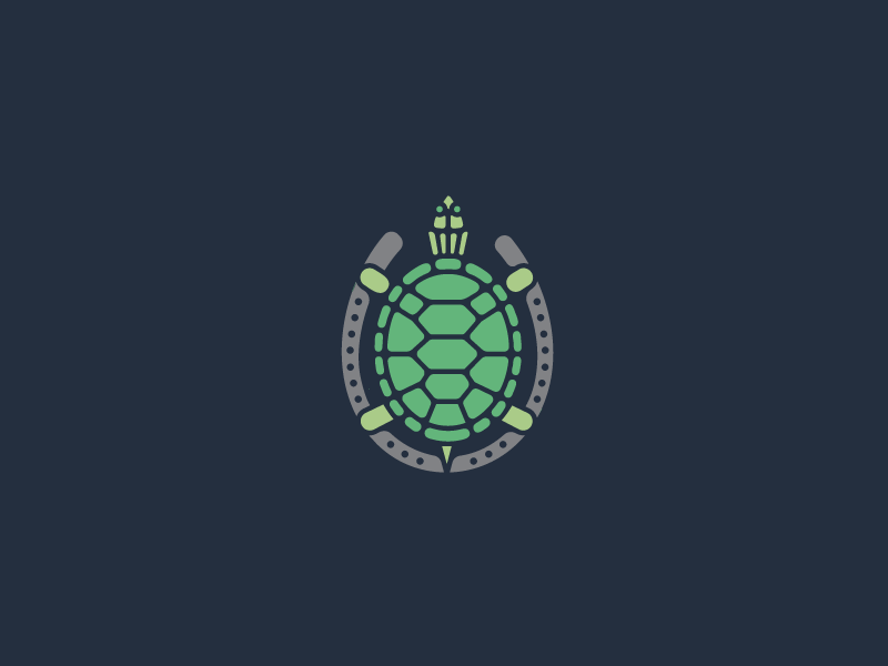 turtle-inc..png