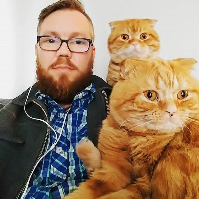 Eli amd Monty decided that I would make a great seat when I sat down today after a long day of work.  #YellowBrickFold #munchkinfold #scottishkilt #scottishfold #catsofinstagram #munchkin #cat #catsrequest #photocat #britishshorthair #scottishfoldcat #scottishfoldmunchkin