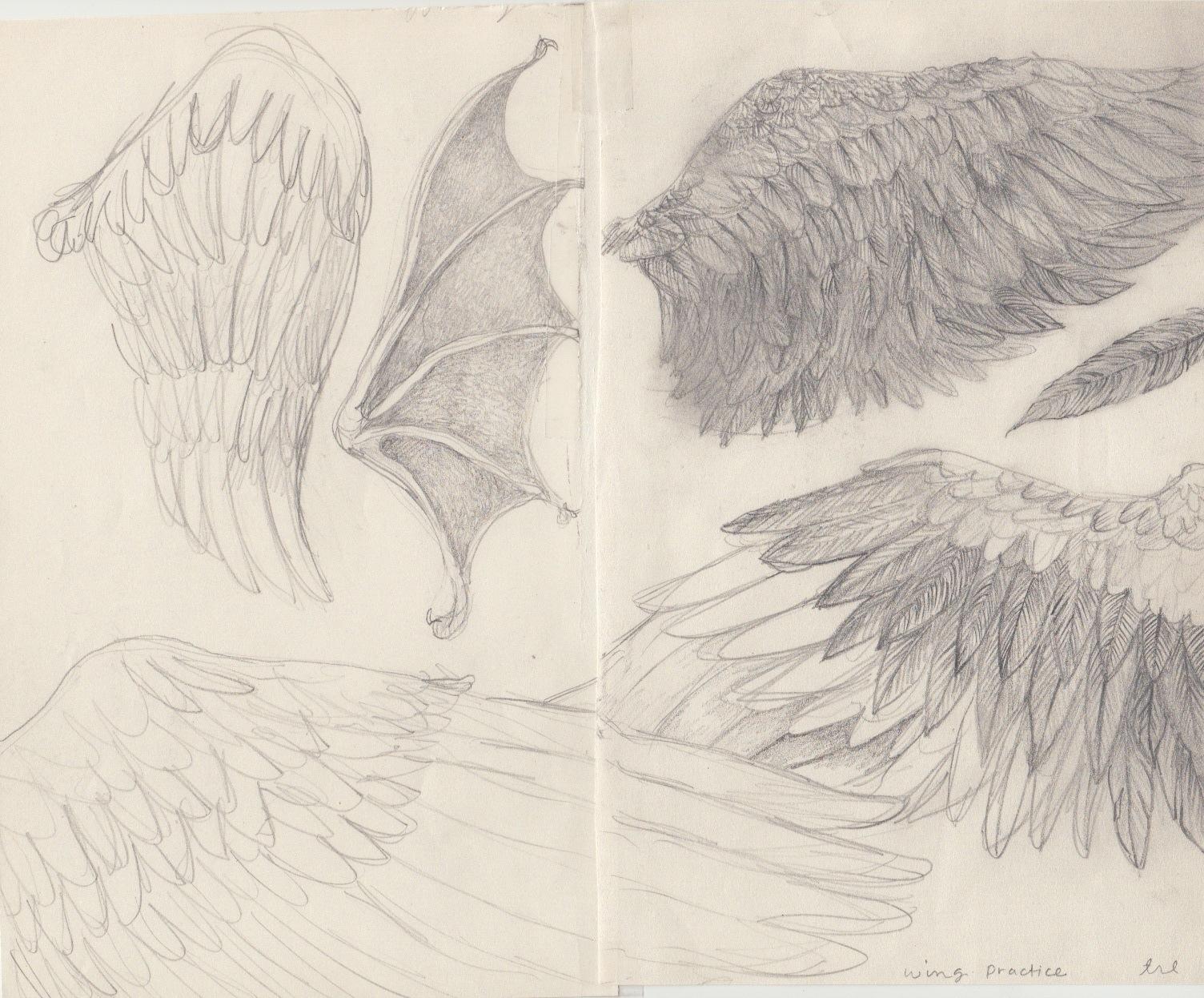wing-practice-2.jpeg