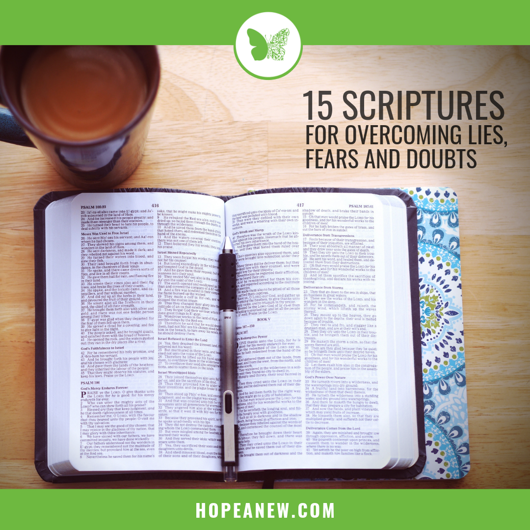 15 Scriptures - Interior.png