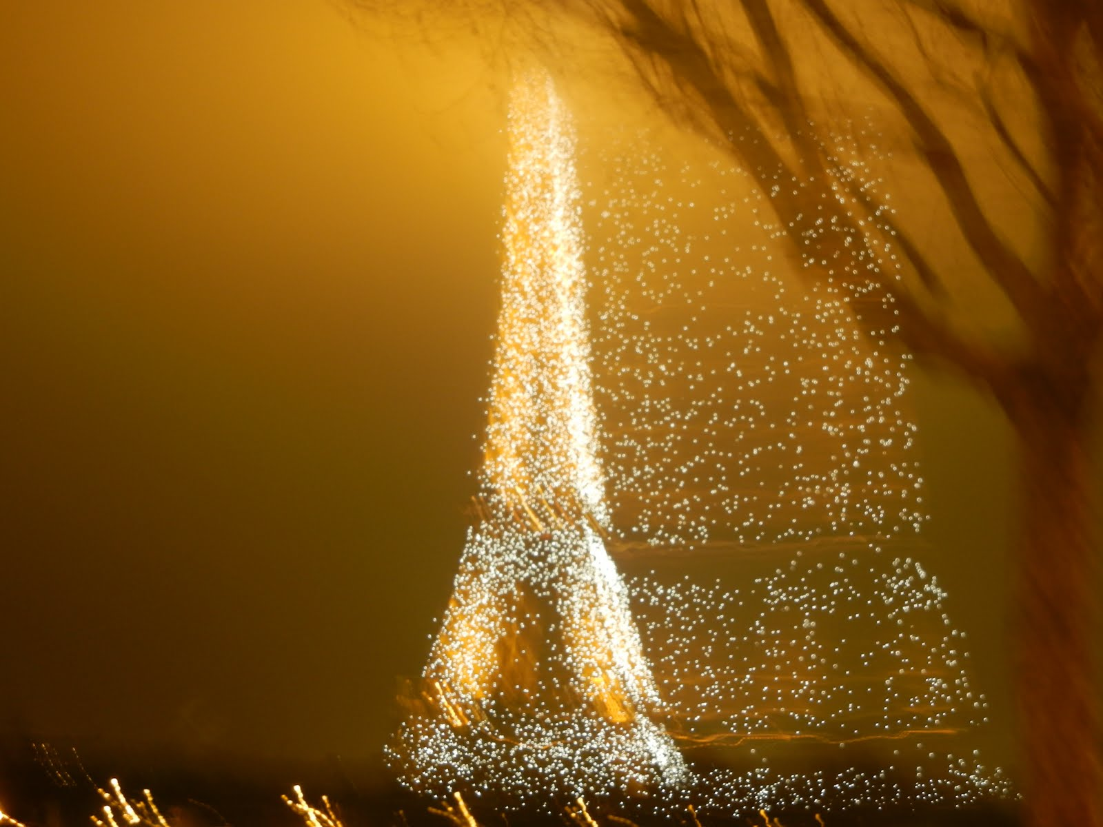 My most favorite unintentional blurry photo - Paris NYE 2011