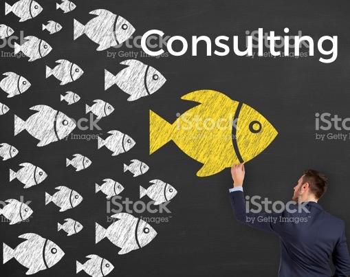 Consulting Fish.jpg