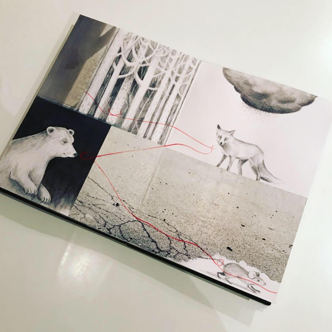 Diana SB book.JPG