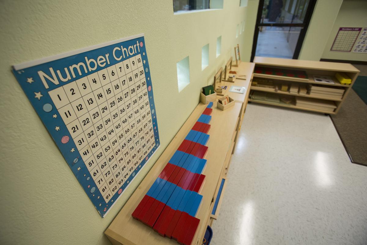 LittleBlossomMontessoriSchools-GoldRiver_46.jpg