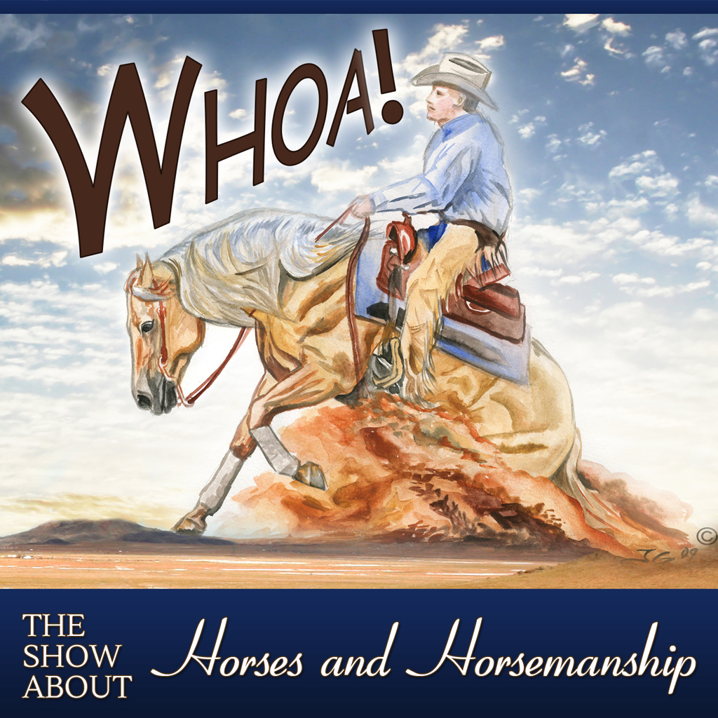 WhoaAlbumArt_Show 1024 sq png.png