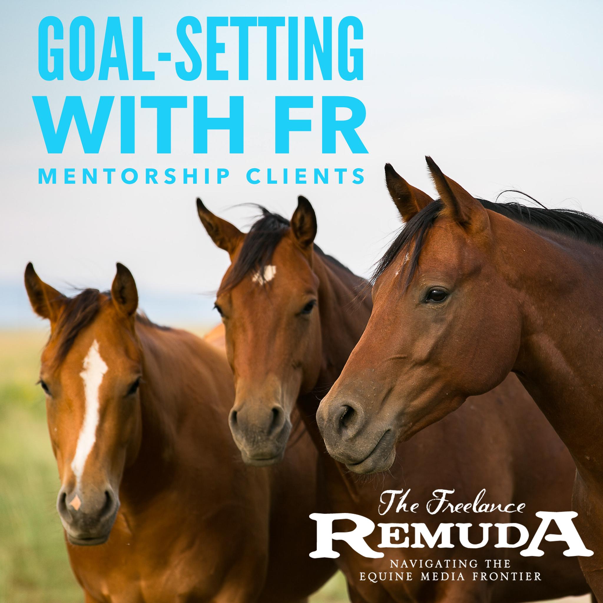 goal setting FR mentor.jpg