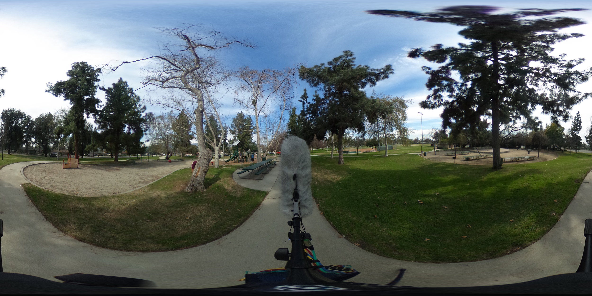EXT_Day_Park_LightChildrenPlaying_BirdChirps_Bicycle_Group_Walla_360PictureReference.JPG