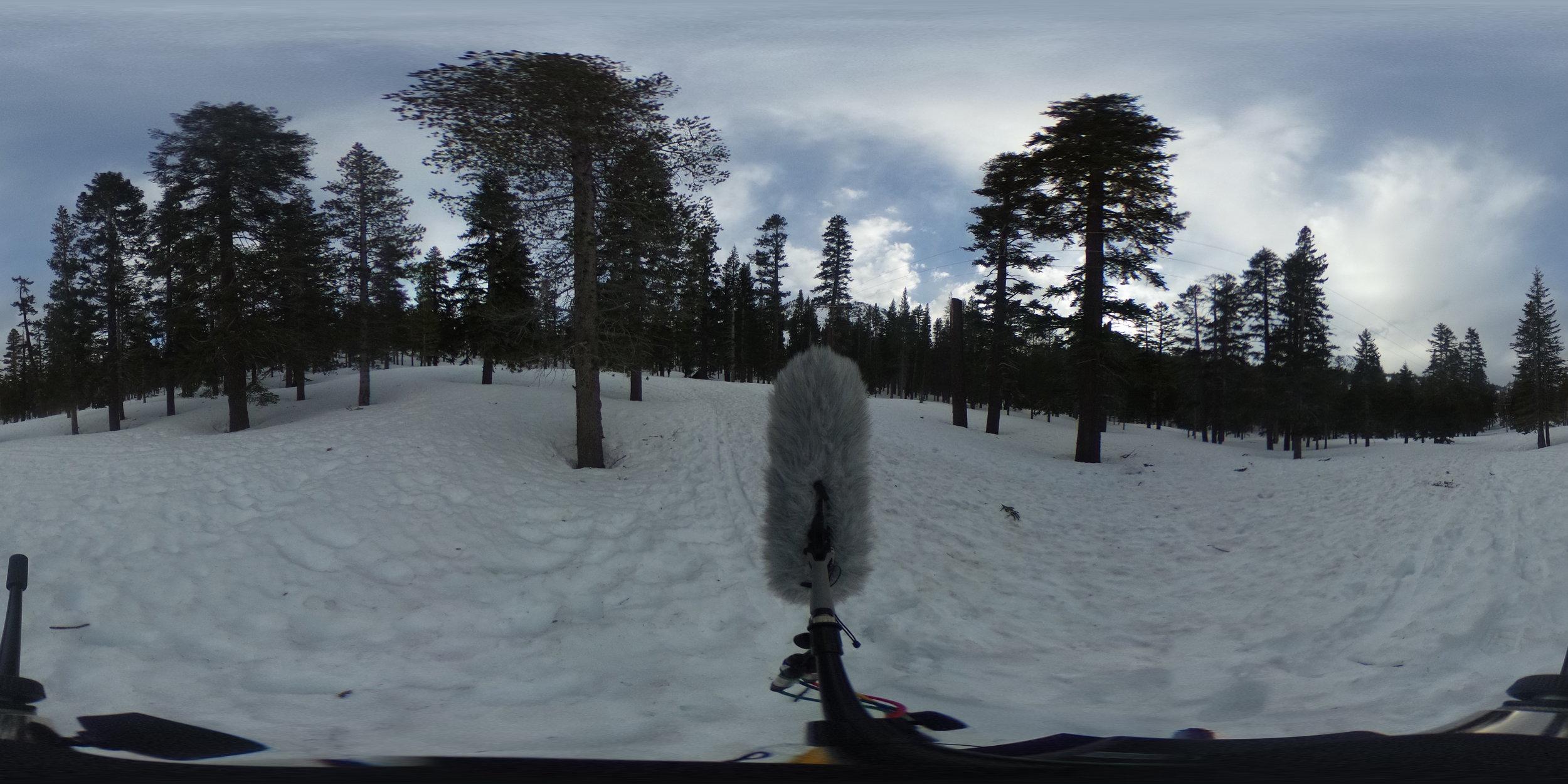 EXT_Day_Snow_OpenField_SteadyColdWInd_DistantVoicesTalking_VeryDistantTraffic_JPEG.JPG
