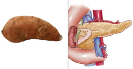 sweet-pancreas.jpg