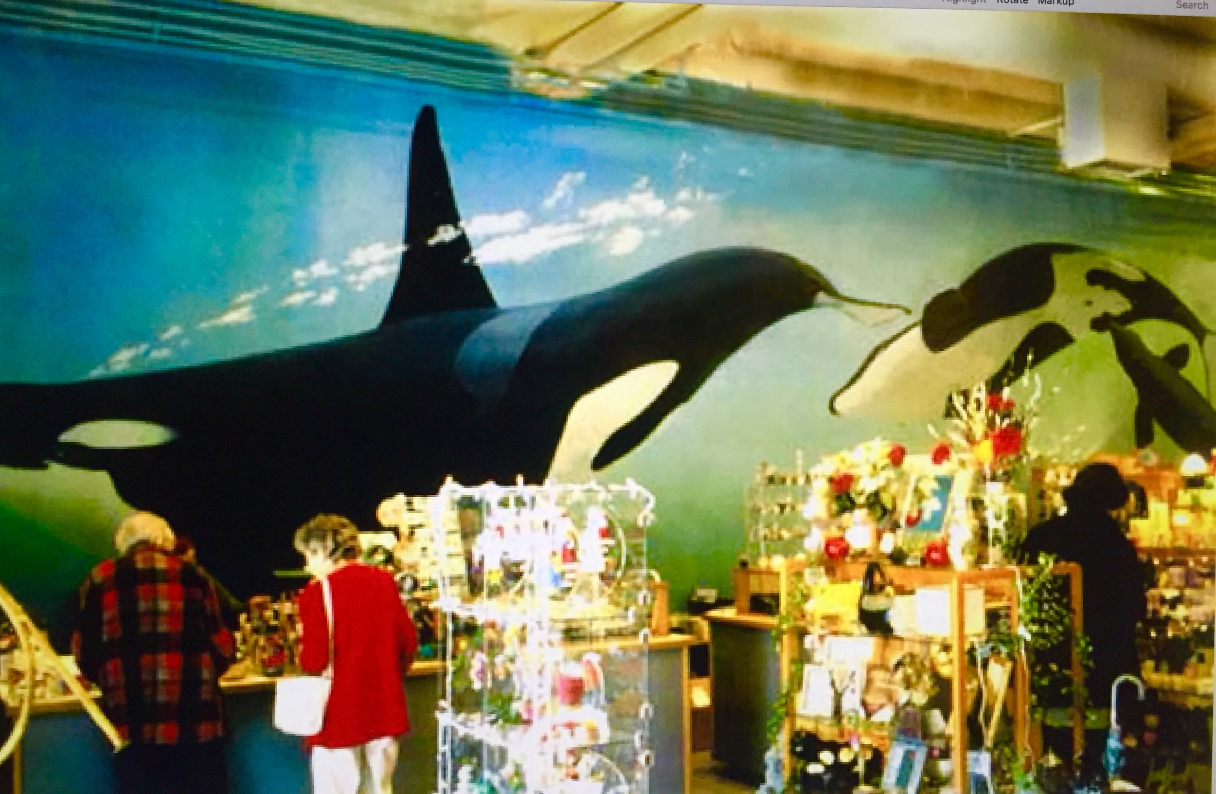 """""""Orca Family"""" 15' x 50' formerly located within the Whales and Friends store at 2nd and Clay Street, Oakland."""
