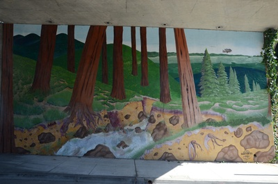 """Title: """"Redwoods"""" 1981    Medium: Politec acrylics    Location: Carson Street beneath highway 24 Oakland    My first large scale public artwork was more of a college project done while completing my degree at Cal State University Hayward"""