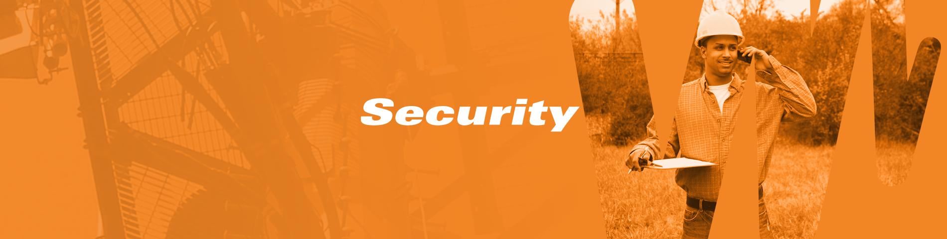 lmn_website_banner_security.png