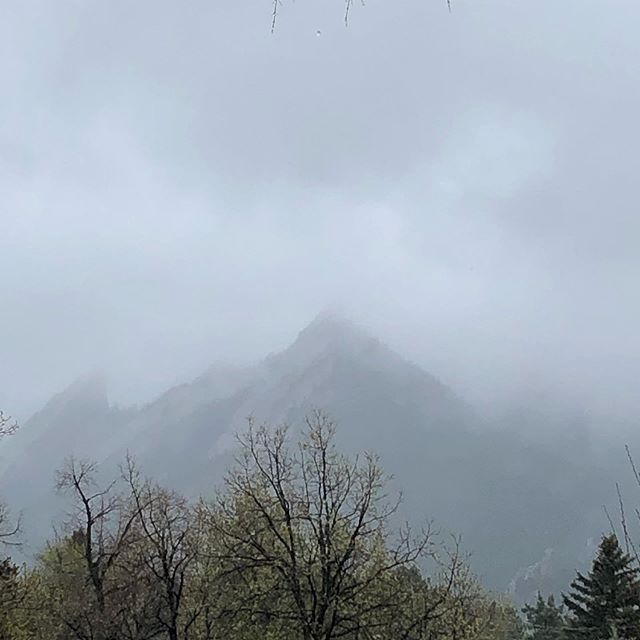 We love these wet misty spring days. The softness of the air holds us like a hug. We appreciate what they do for our minds and our garden.  How do you feel on days like these? What do you enjoy about them? What do you resist?  #spring #wetspringday #boulder #bouldercolorado #flatirons #chautauqua #yin #soothesthesoul #springshowers #rainyday☔ #gentle