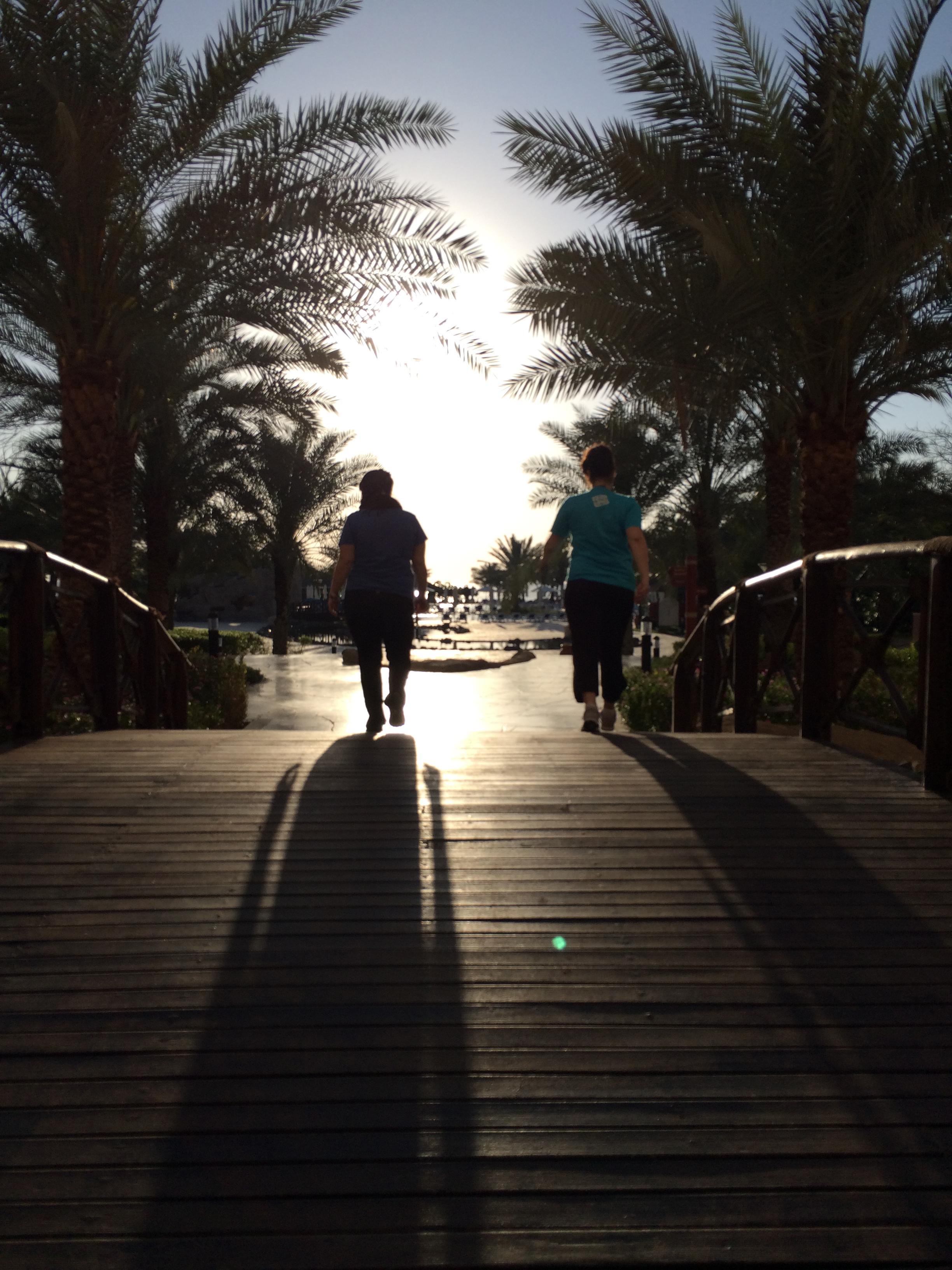 Exploring the Rotana Resort in  Fujairah , UAE