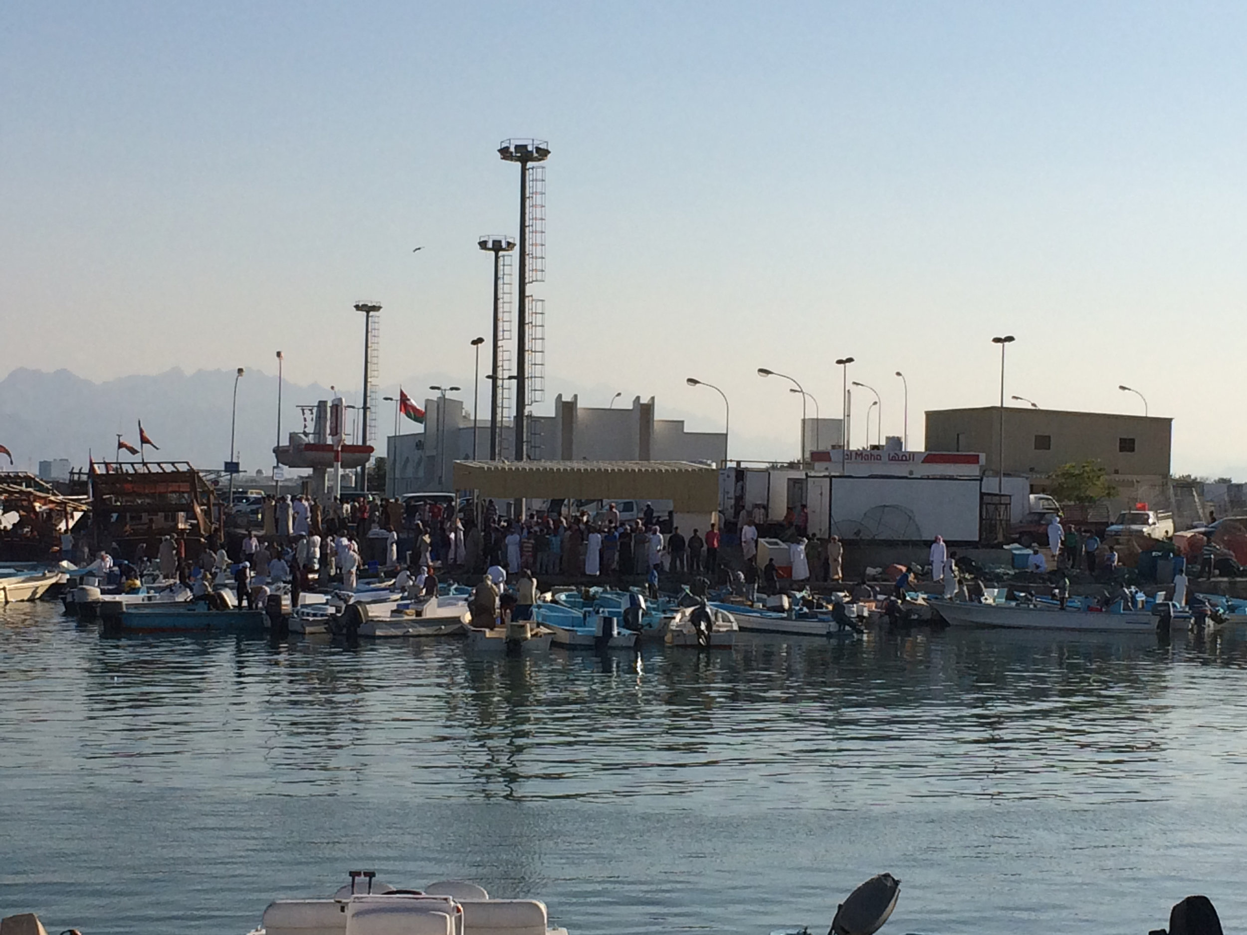 The port in Dibba, Oman was a bustling area of activity.