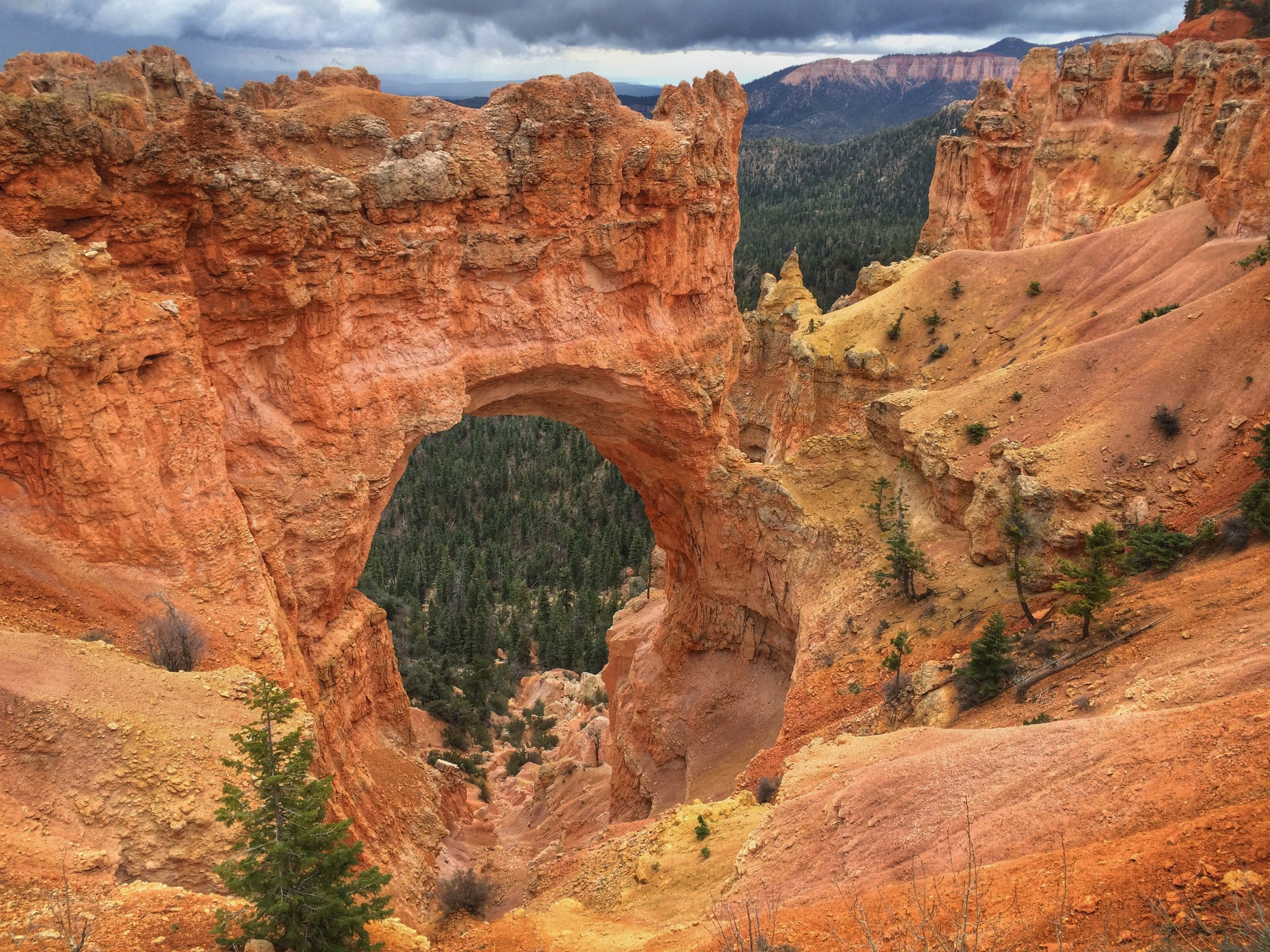 Bryce Canyon's Scenic Drive