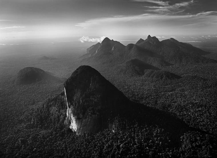 Sebastião Salgado   Amazon Forest, State of Amazonas, Brazil , 2009  Gelatin silver print  Open Edition  24 x 30 inches Value $10,000 - Available for $5,000