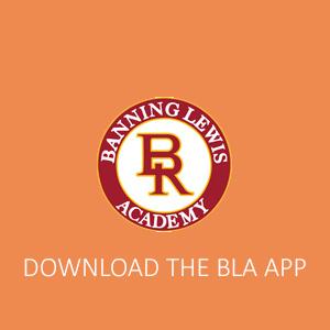 bla app_01.jpg